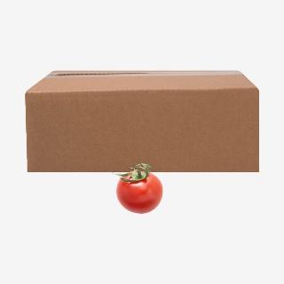 [대용량]토마토 5kg