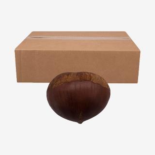 [대용량] 밤 10kg X 1박스
