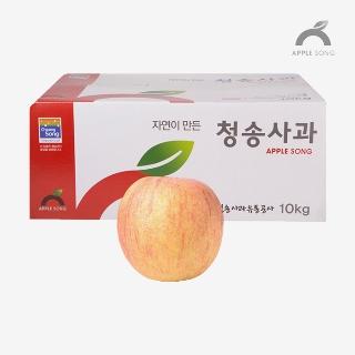 [대용량]사과 10kg x 1박스