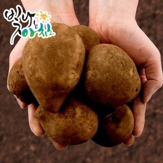 [무료배송] 빛나는아침 포슬포슬 감자 중 대 특 왕특 포근한 감자의 맛을 느껴보세요